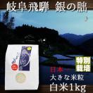 新米 28年産 岐阜県飛騨 銀の朏 いのちの壱 白米 1kg 特別栽培米