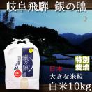 新米 29年産 岐阜県飛騨 銀の朏 いのちの壱 白米 10kg 特別栽培米