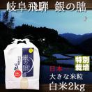 新米 28年産 岐阜県飛騨 銀の朏 いのちの壱 白米 2kg 特別栽培米