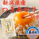 (無洗米)新潟県産 米  5kg×1袋  お米 つきあかり5キロ 令和元...