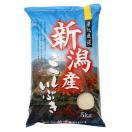 米5kg 令和元年 新潟産 お米5kg こしいぶき5キロ 2019 令和 白米...