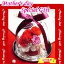 母の日ギフト 香り付きプリザ ヒーリング・ベル カーネーション フラワーギフト ∬p-hb(W)§