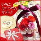 母の日ギフト 香り付きプリザ&苺ミニバウムのスイーツセット ∬p-hbsw(W)§