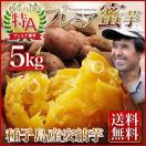 さつまいも 安納芋(あんのういも・ 安納いも)鹿児島 種子島産 産地直送 送料無料 プレミア蜜芋5kg  贈答用 ギフト可
