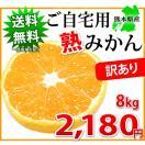 ご自宅用に 訳あり「熟」 みかん 10kg 熊本県産 送料無料 訳ありみかん
