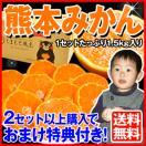 スーパーW増量 熊本県産【訳あり】お試し熊...