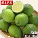熊本県産 レモン 1.5kg 送料無料 訳あり 約...