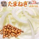 """【送料無料】""""新たまねぎ"""" 訳あり 約20kg..."""