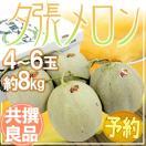 """【送料無料】北海道 """"夕張メロン"""" 4玉~6玉 約8kg 共撰・良品以上【予約 6月末~7月】"""