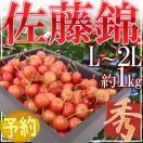 """【送料無料】山形産 """"佐藤錦"""" 1kg L〜2L..."""