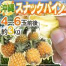 """【送料無料】沖縄産 """"スナックパイン"""" 4..."""