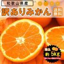 (あすつく対応)みかん 5kg 和歌山県産 訳...