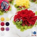 プリザーブドフラワー 母の日 ギフト 枯れない花 ギフト カーネーション アレンジメント ミニアレンジ カーネーション