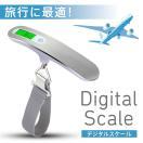 携帯式デジタル スケール ステンレス仕上げ 最大50kgまで量れる 吊り下げ式ラゲッジチェッカー 旅行 アウトドア シルバー 簡易日本語説明書付き