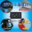 デジタル温度計 デジタル 水温計 温度計 液晶 室内、車内、水槽、冷蔵庫の温度管理に 【送料無料】(ゆうメール)