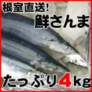 秋刀魚 北海道 さんま とろサンマ 約4kg 36〜40尾 1尾105g前後 根室産 お刺身...