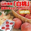 【値引き】 ギフト 白桃 送料無料 山形県産 品種おまかせ 1.4kg(5-7玉) お試し モモ もも