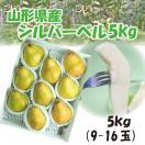 ギフト 洋梨 送料無料 山形県産 西洋梨 シルバーベル 5kg(9-16玉)