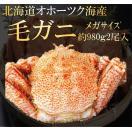 北海道オホーツク海産浜茹で毛ガニ 1杯約980g 2杯入 メガサイズ 最上級品