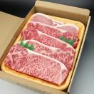 送料無料!当店副店長のおすすめの商品☆讃岐牛 オリーブ牛・旨い牛・讃玄豚のサーロイン各2枚入りのステーキセット! の商品ページへ