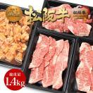 お中元 松阪牛黄金の焼肉セット 1400g 松坂牛 牛肉 肉 和牛 訳あり 焼き肉 焼肉 BBQ バーベキュー グルメ 内祝い