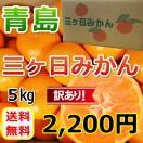 三ケ日みかん青島訳ありみかん(不揃い)(5kg)