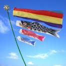鯉のぼり こいのぼり 錦鯉 ベビー鯉のぼり 10号 ミニ鯉のぼり 室内鯉のぼり