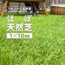 【予約販売 8月下旬入荷予定】人工芝 リア...