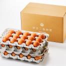 濃厚な栄養たっぷり!鮮やかなオレンジ色たまご!!「日の出たまご」45個入り【たまご】【日の出】【伊豆】【三島】【卵屋】