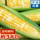 静岡県産 朝どり とうもろこし 甘々娘(か...