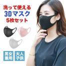 マスク 洗える 立体 予防 5点セット 花粉 ...