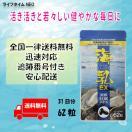 濃縮牡蠣エキス 海乳EX 62粒ミネラル 送料...