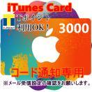 iTunes Card アイチューンズカード 3,000円分 [コード通知専用]  Apple プリペイドカード
