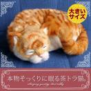 リアルな猫のぬいぐるみ【本物そっくりに眠る茶トラ猫(大)のぬいぐるみ】猫 ねこ ネコ 誕生日 プレゼント ギフト クリスマス ペット ペットロス