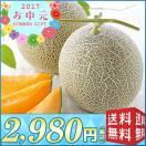 【送料無料 お中元 メロン】北海道メロン【L10-7】(513)