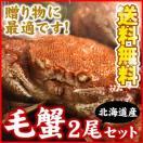 毛蟹(毛ガニ)400g前後×2尾入(送料無料)