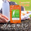 グルコサミン サプリ コンドロイチン コラーゲン 運動サポート フィッシュコラーゲン サプリメント 約3ヶ月分