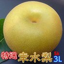 梨 茨城県 なし 幸水 フルーツ  特選完熟梨5kg 幸水 3L14玉 1日5箱限定 完熟  ラジオで紹介 甘い 果物 ギフト お取り寄せ 産地直送