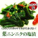 葉にんにくの塩漬島とうがらし味100g(ご飯のお供 おかず ニンニク)