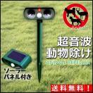 動物除け 超音波 ソーラー 超音波動物除け 猫よけ 電池不要 赤外線センサー アニマルバリア 送料無料