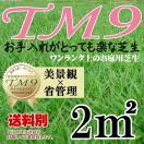 芝生 TM9 1平米 鹿児島産