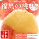 送料無料 桃 もも 福島の桃 約1.5kg (6~7玉)福島産 市場直送 8月中旬頃出荷予定