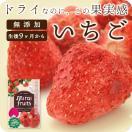 フリーズドライフルーツ mirai fruits ミライフルーツ 未来果実 いちご 10g 無添加 砂糖不使用 ベビーフード