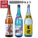 送料無料    当店おすすめの黒糖焼酎1.8L瓶  飲み比べ 3本セット
