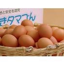 卵 鶏卵 卵かけご飯 普段使い卵20個入(特撰吟味夕映卵)