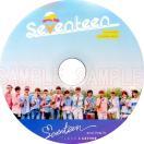 【韓流DVD】SEVENTEEN【 2nd PV & TV COLLECTION 】LOVE & LEETTER ★セブンティーン