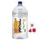 うまか麦 25° 5000ml 1ケース(4本入り)ペットボトル 鹿児島県 若松酒造