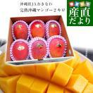 沖縄県より産地直送 JAおきなわ 豊見城市・南部共選 完熟マンゴー 約2キロ(4から6玉入) マンゴー まんごー