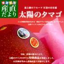 送料無料 宮崎県から産地直送 JA宮崎中央 完熟マンゴー「太陽のタマゴ」最高級AA品 5Lサイズ×1玉