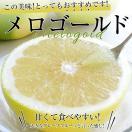 送料無料 カリフォルニア産 メロゴールド 約4.5キロ(9玉) 柑橘